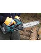 Cordless, electric and petrol chainsaws